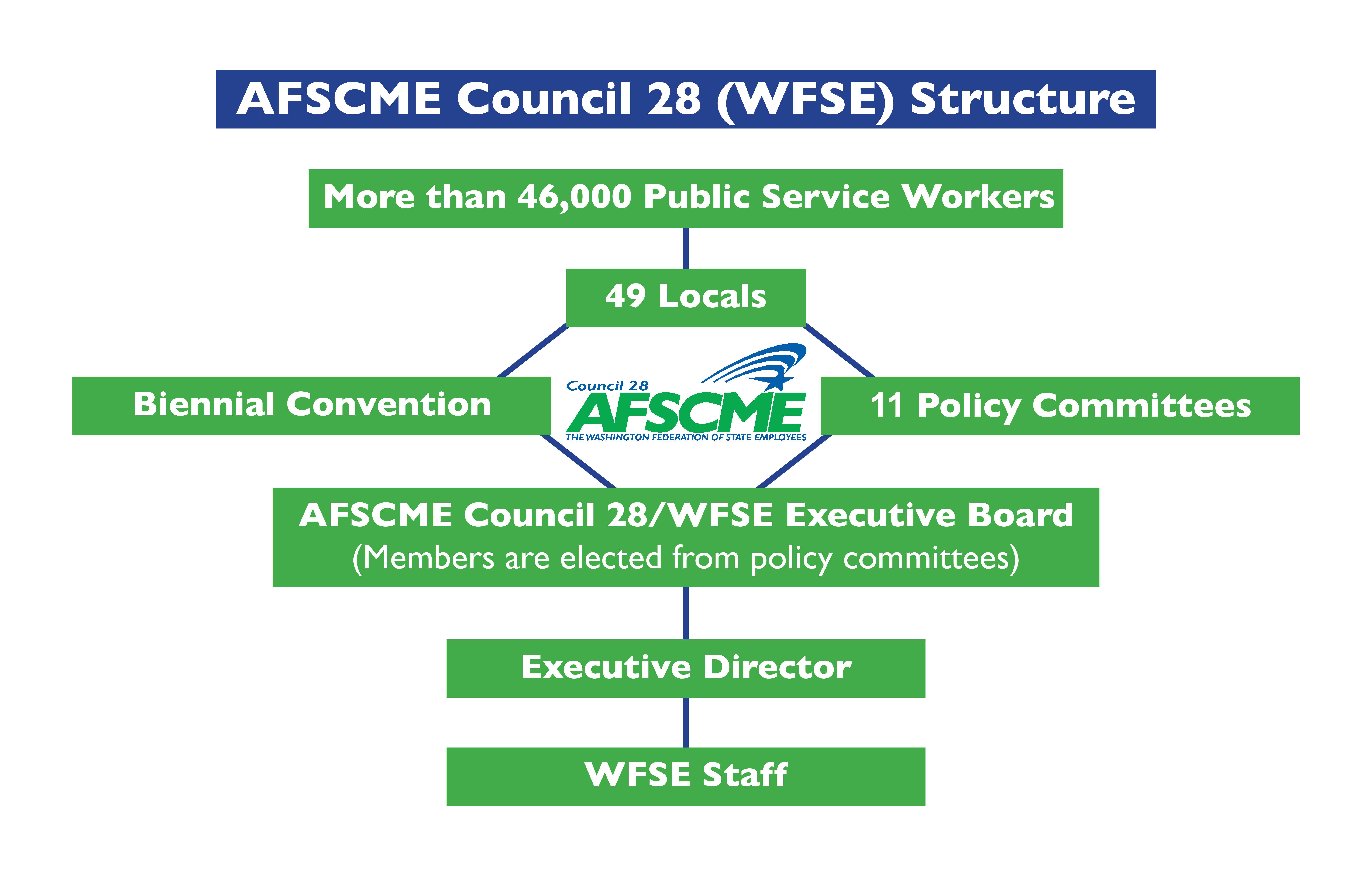 WFSE Structure